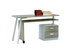 Shiri Study Desk